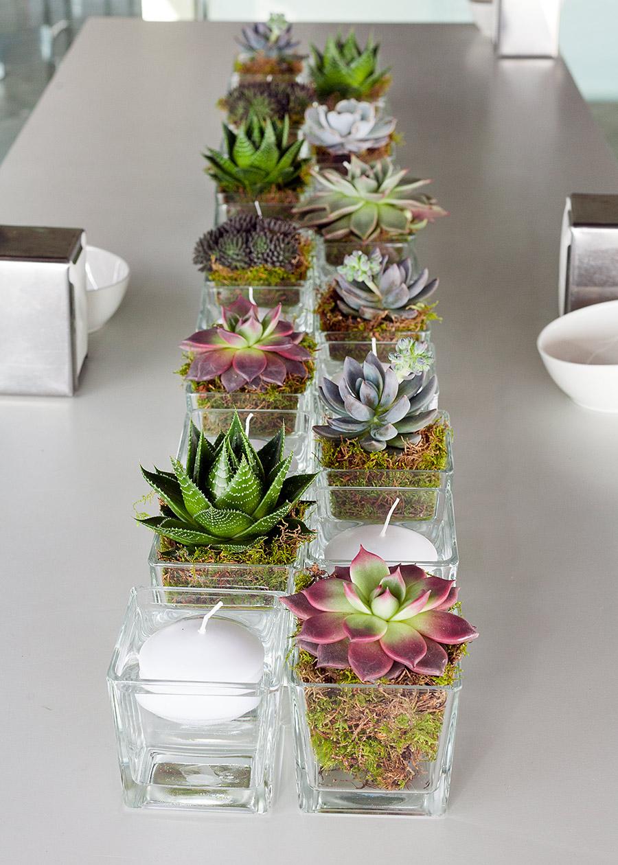 Decoracin mesas cactus Salaverria Novias